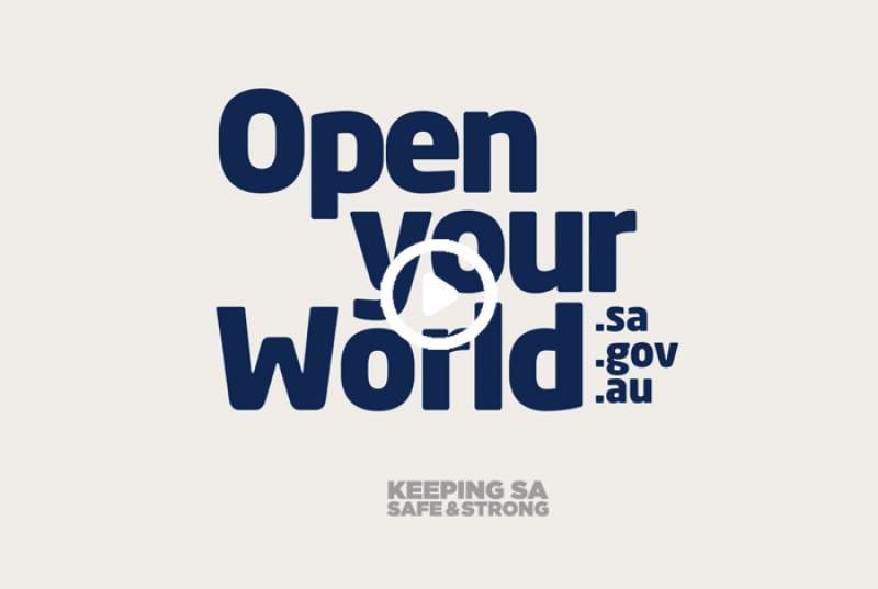 Hear from the Open Your World ambassadors