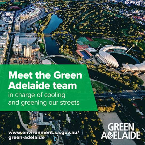 New Green Adelaide board to lead city-wide greening