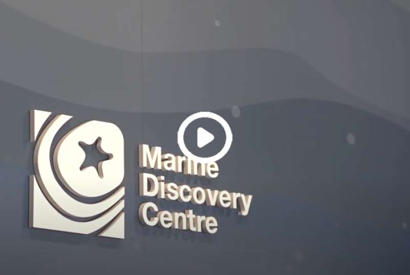 A visit to the Marine Discovery Centre