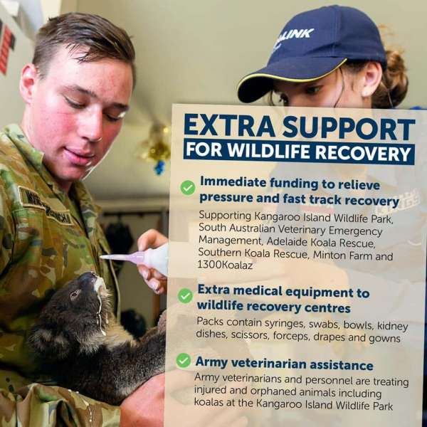 Extra support for wildlife recovery