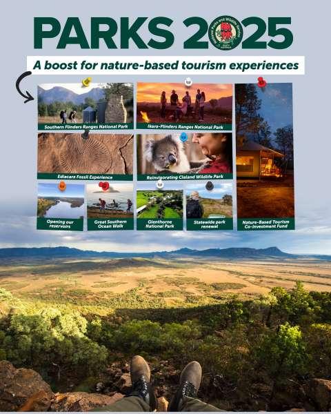 Eco-tourism turbocharged in post bushfires stimulus