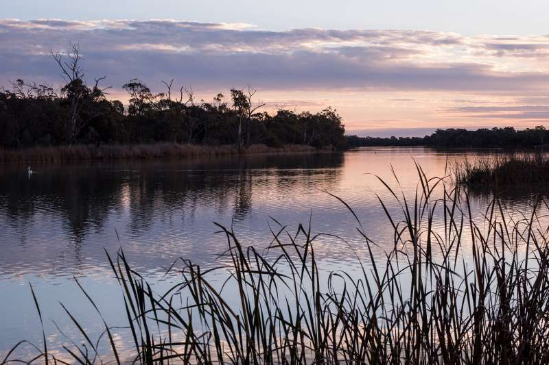 Delivering the Murray-Darling Basin Plan