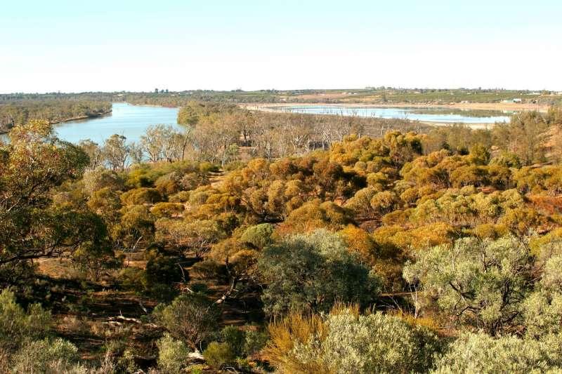 SA calls for strong leadership on the Murray-Darling Basin Plan