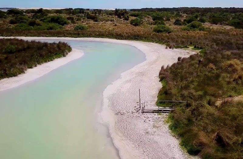 Project Coorong Update!