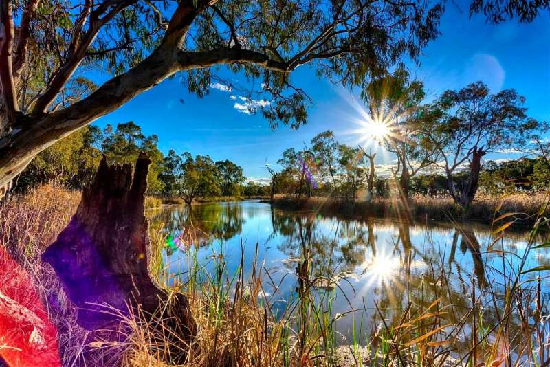Environmental water for the Murray starts to flow